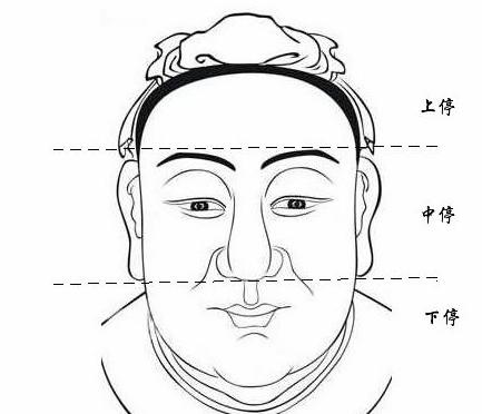 學面相:三停所代表的面相學意涵